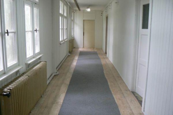 hotel-pro-psy-1-20120607-1327721885B5988F87-FABF-199A-F0E1-8A6E75F2D512.jpg